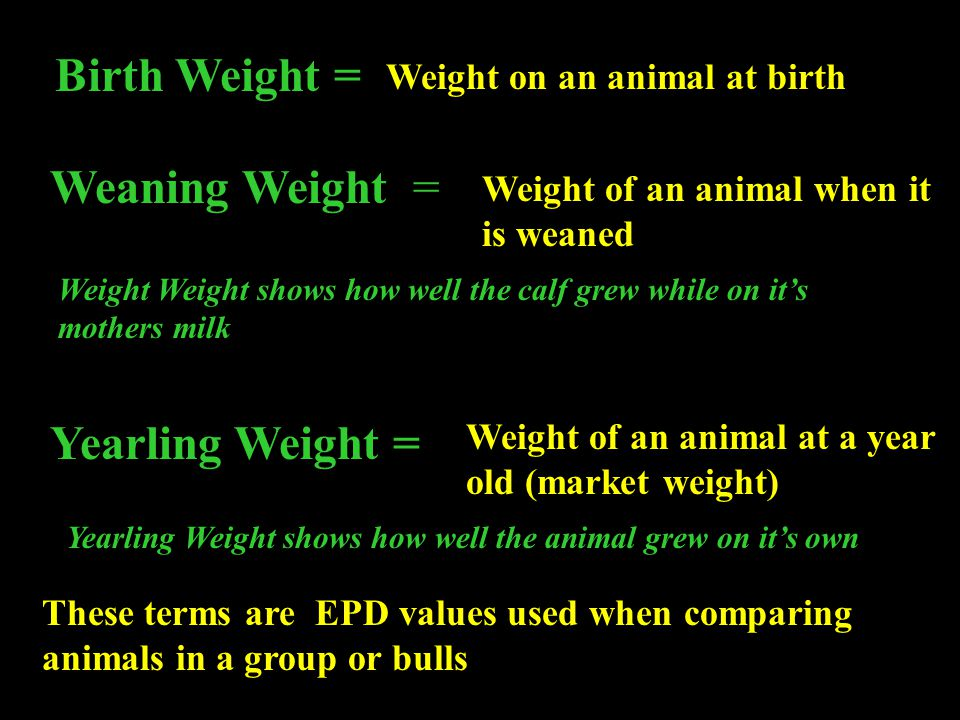 Birth Weight = Weaning Weight = Yearling Weight =