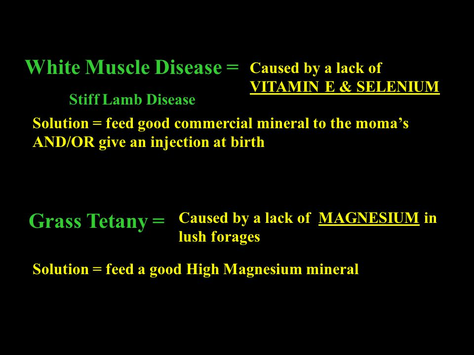 White Muscle Disease = Grass Tetany =