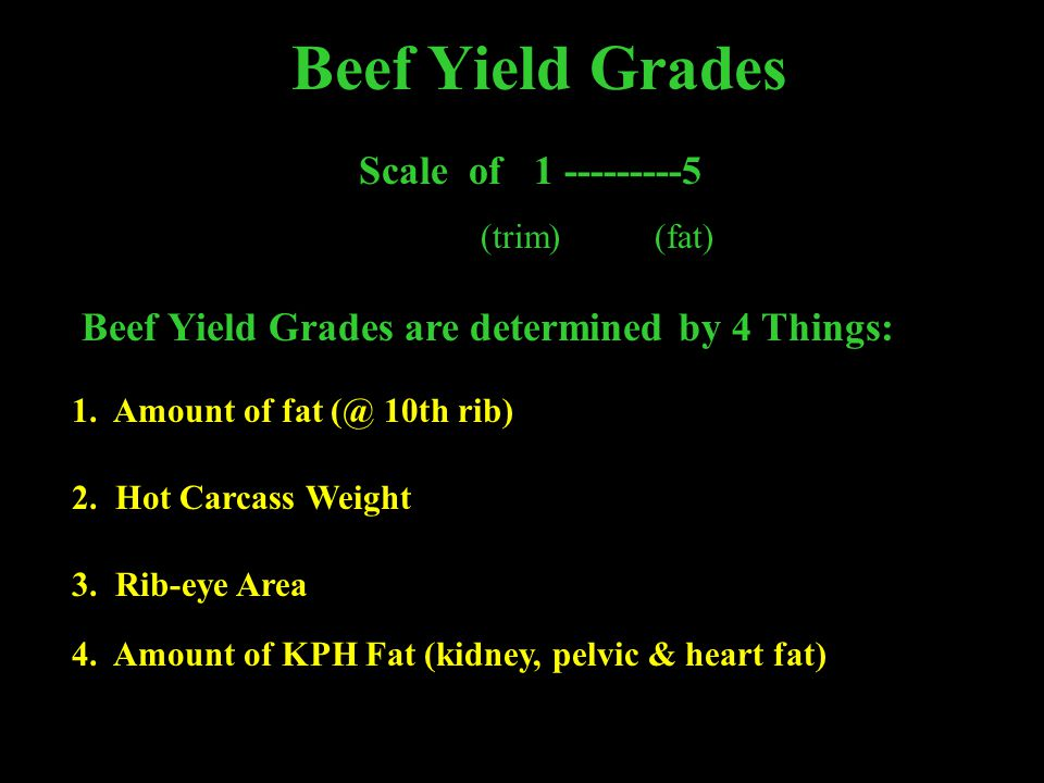 Beef Yield Grades Scale of 1 ---------5