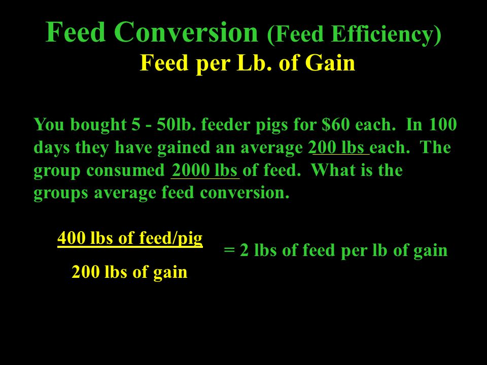 Feed Conversion (Feed Efficiency)