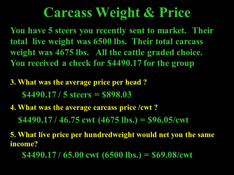 Carcass Weight & Price
