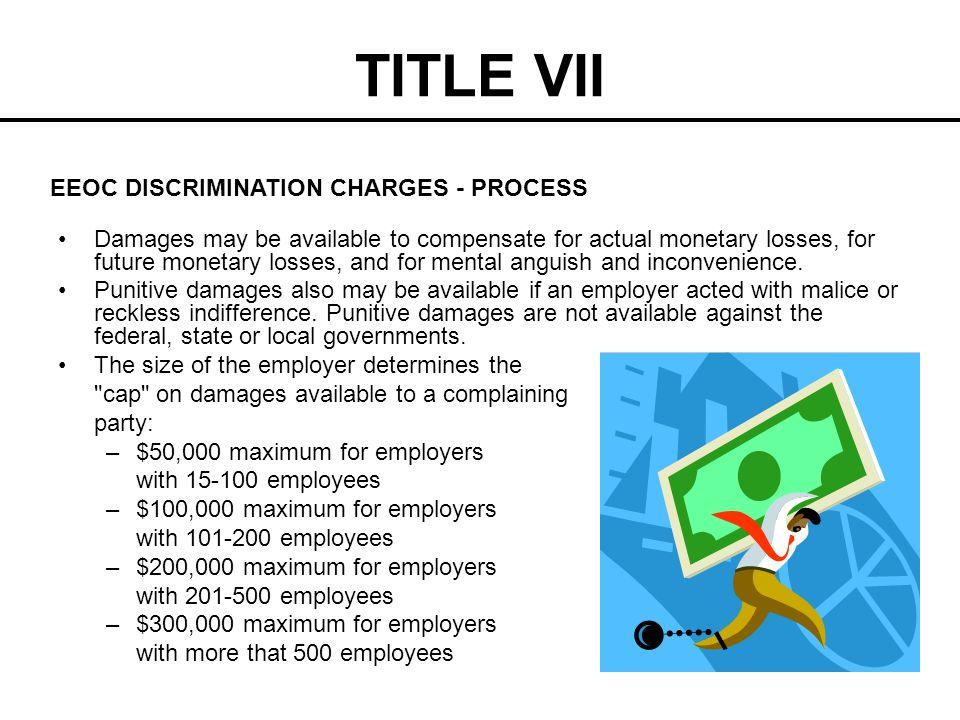 TITLE VII EEOC DISCRIMINATION CHARGES - PROCESS