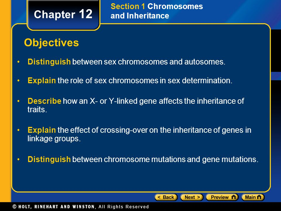 Explain the role of sex chromosomes in sex determination