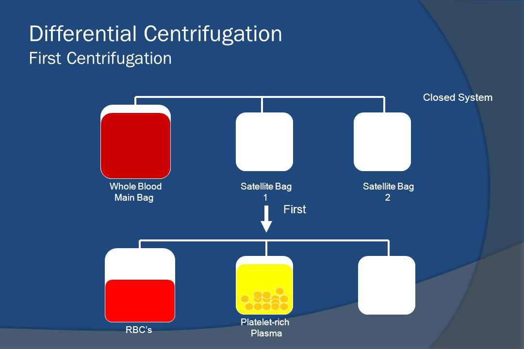 Differential Centrifugation First Centrifugation