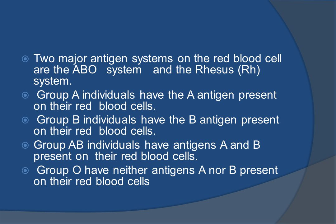 Two major antigen systems on the red blood cell are the ABO system and the Rhesus (Rh) system.