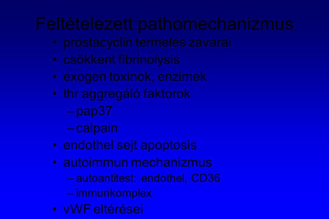 Feltételezett pathomechanizmus