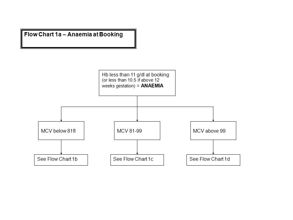Flow Chart 1a – Anaemia at Booking