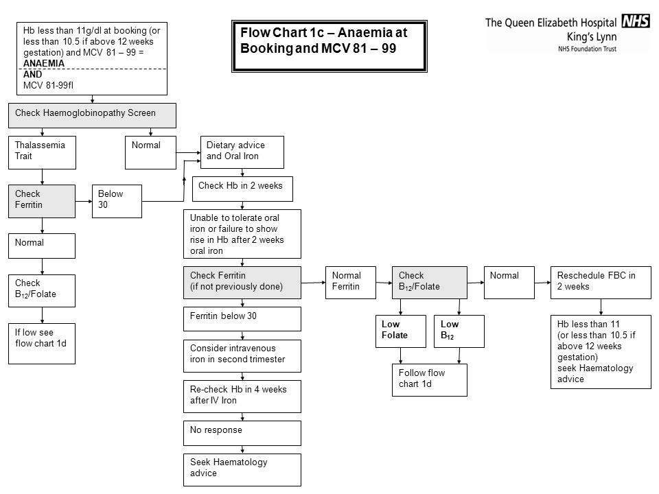 Flow Chart 1c – Anaemia at Booking and MCV 81 – 99