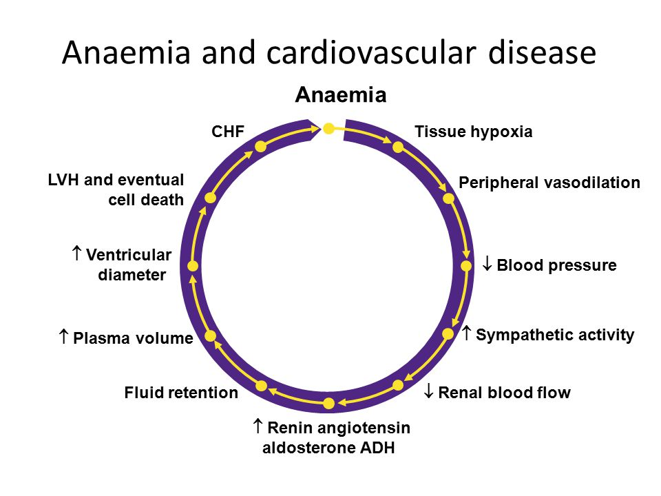 Anaemia and cardiovascular disease