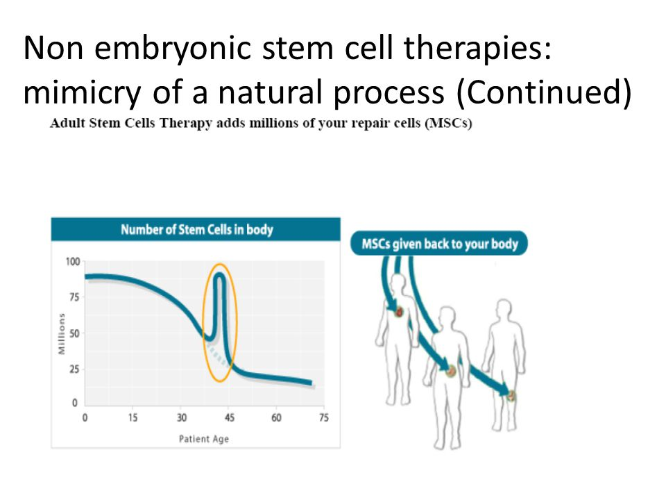 Non embryonic stem cell therapies: mimicry of a natural process (Continued)