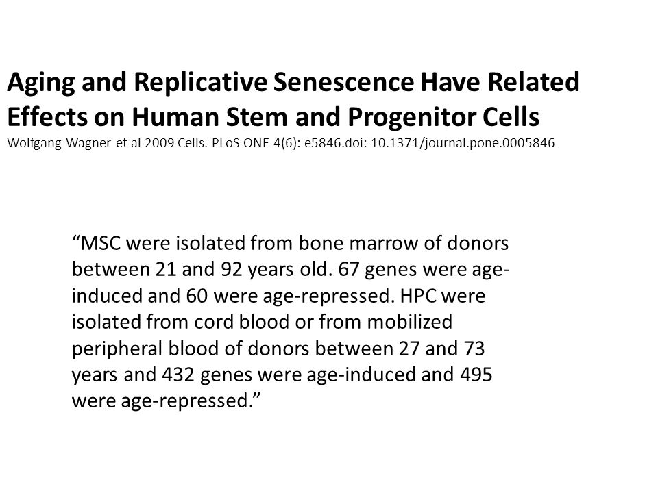 Aging and Replicative Senescence Have Related Effects on Human Stem and Progenitor Cells