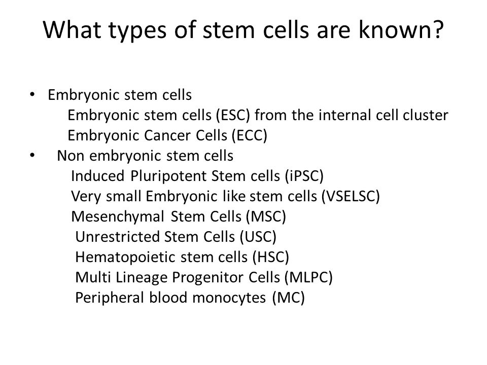What types of stem cells are known