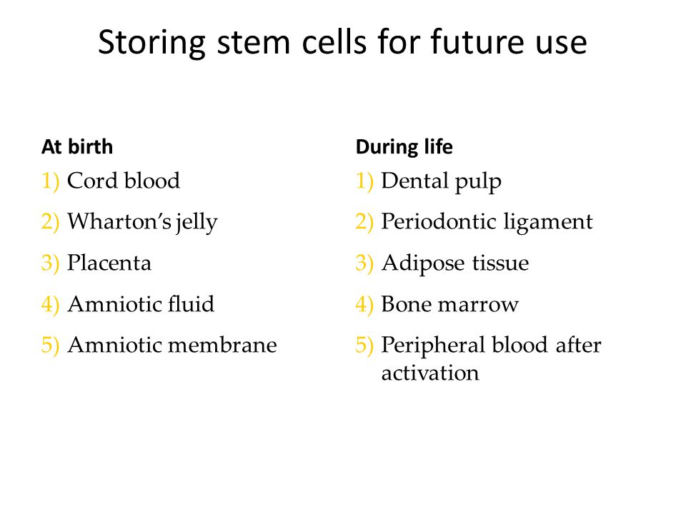 Storing stem cells for future use