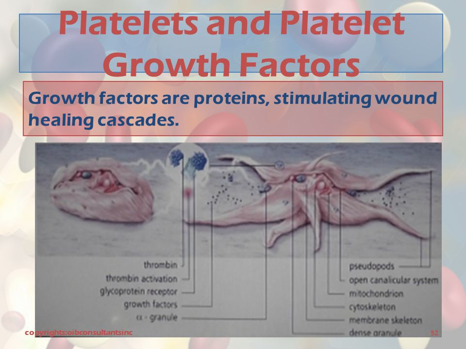 Platelets and Platelet Growth Factors