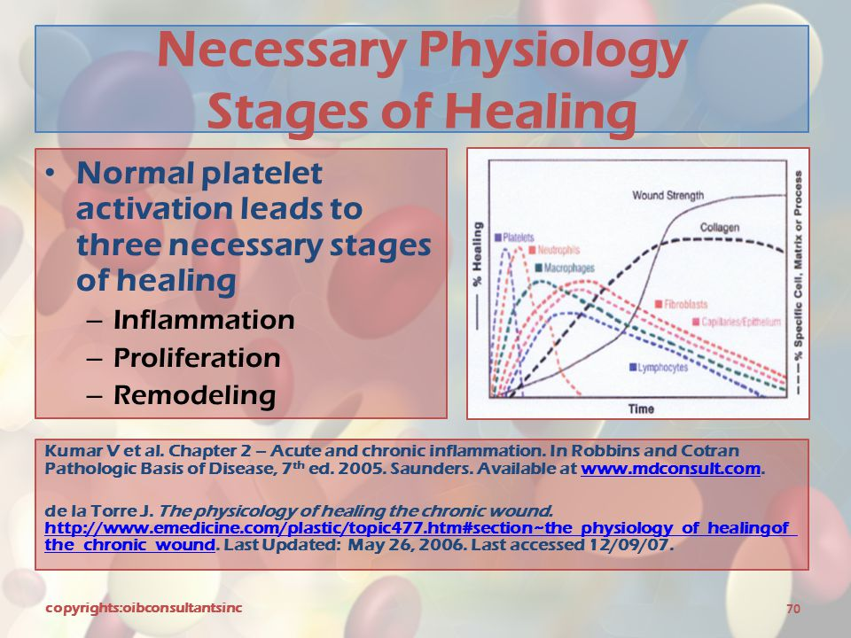 Necessary Physiology Stages of Healing
