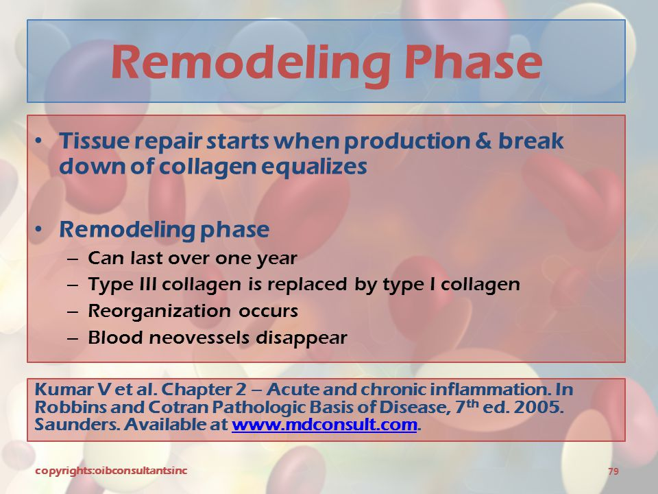 Remodeling Phase Tissue repair starts when production & break down of collagen equalizes. Remodeling phase.