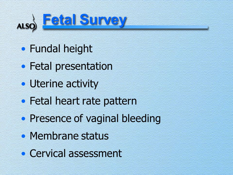 Fetal Survey Fundal height Fetal presentation Uterine activity