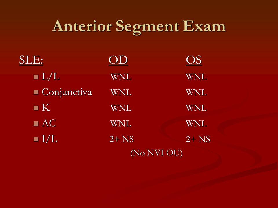 Anterior Segment Exam SLE: OD OS L/L WNL WNL Conjunctiva WNL WNL