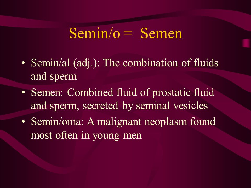 Semin/o = Semen Semin/al (adj.): The combination of fluids and sperm