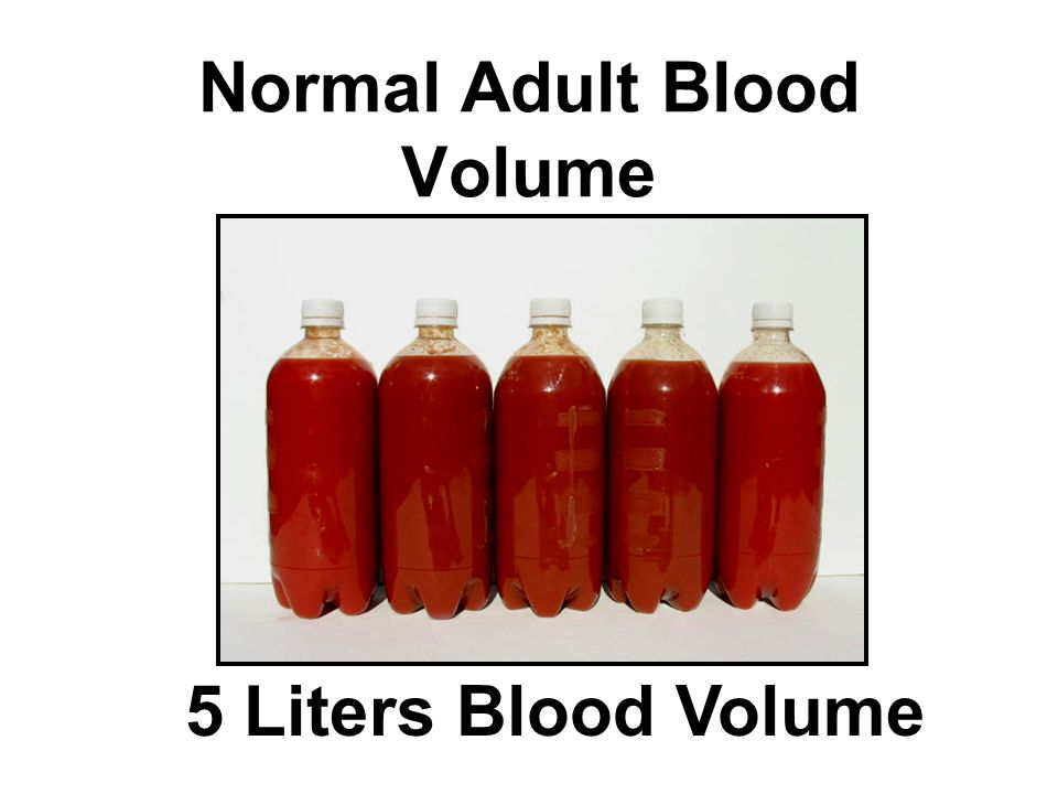Normal Adult Blood Volume