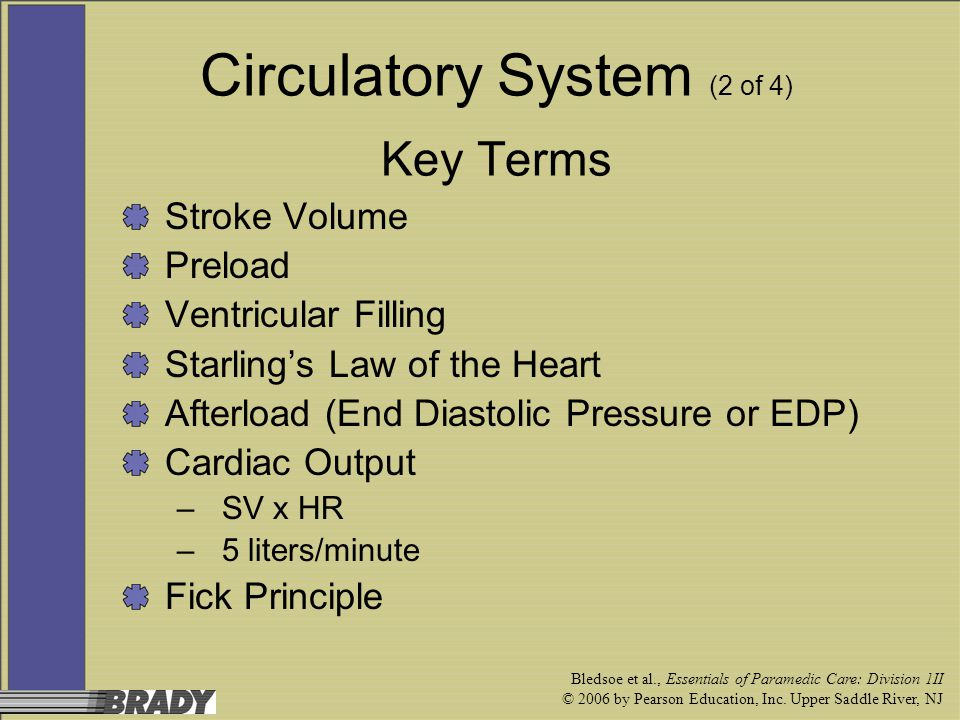 Circulatory System (2 of 4) Key Terms