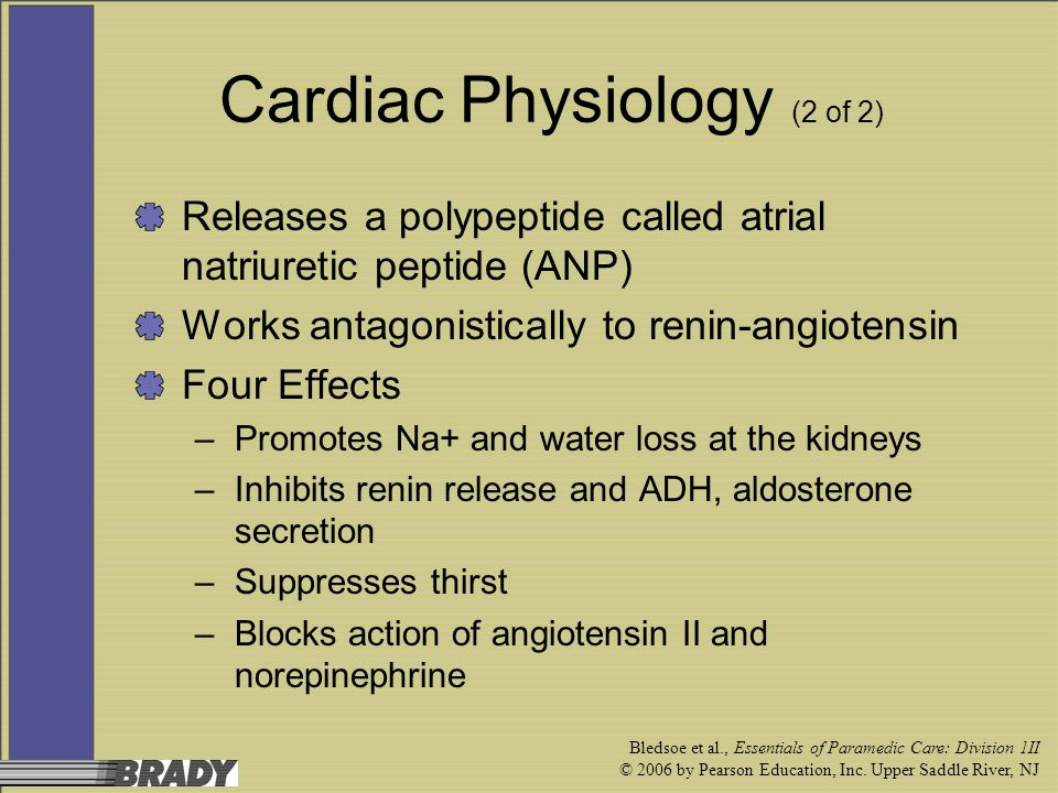 Cardiac Physiology (2 of 2)