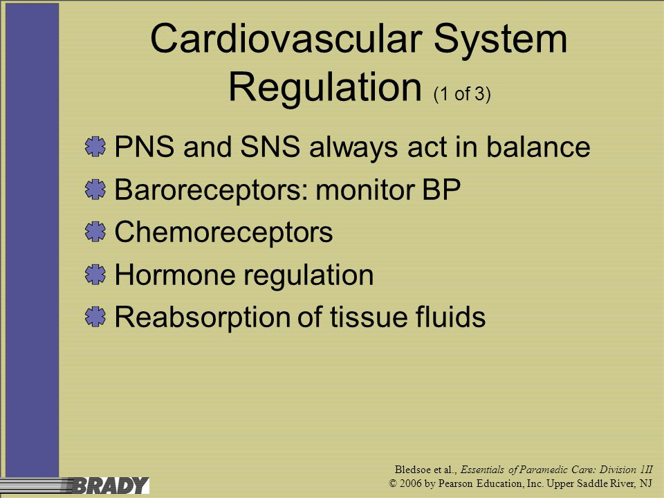 Cardiovascular System Regulation (1 of 3)