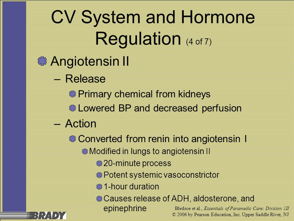 CV System and Hormone Regulation (4 of 7)