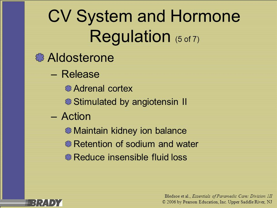 CV System and Hormone Regulation (5 of 7)