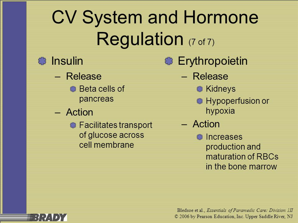 CV System and Hormone Regulation (7 of 7)