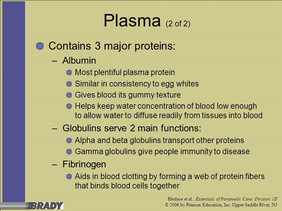 Plasma (2 of 2) Contains 3 major proteins: Albumin