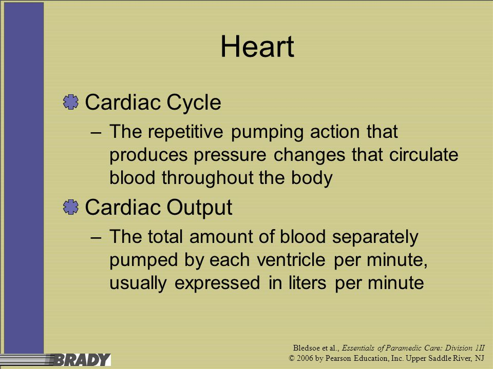 Heart Cardiac Cycle Cardiac Output