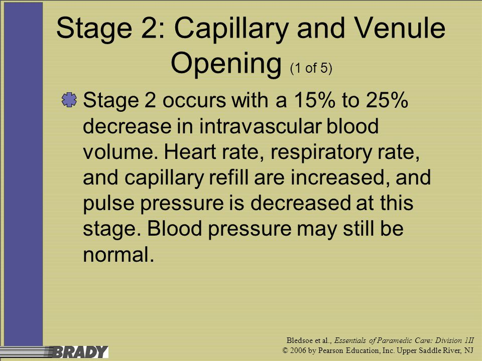 Stage 2: Capillary and Venule Opening (1 of 5)