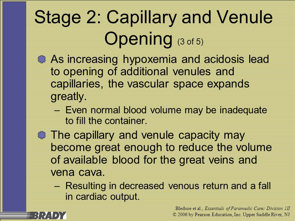 Stage 2: Capillary and Venule Opening (3 of 5)