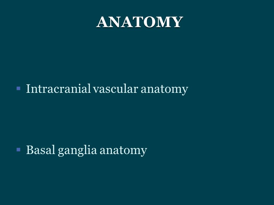 ANATOMY Intracranial vascular anatomy Basal ganglia anatomy