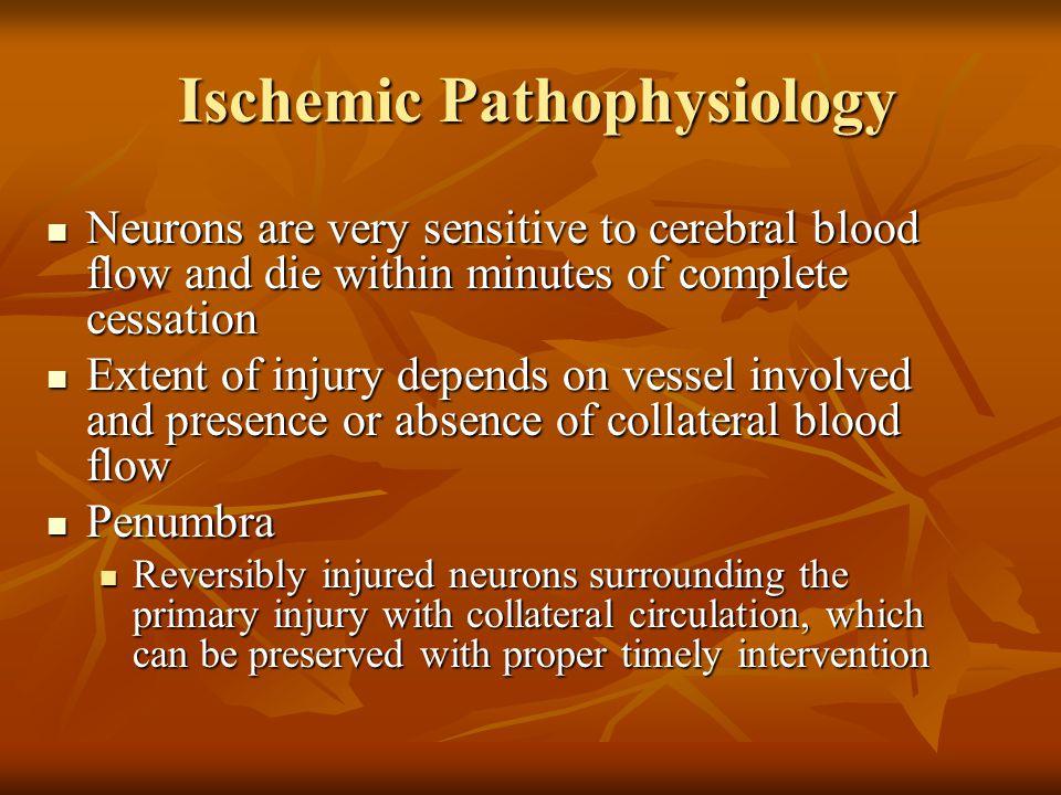 Ischemic Pathophysiology