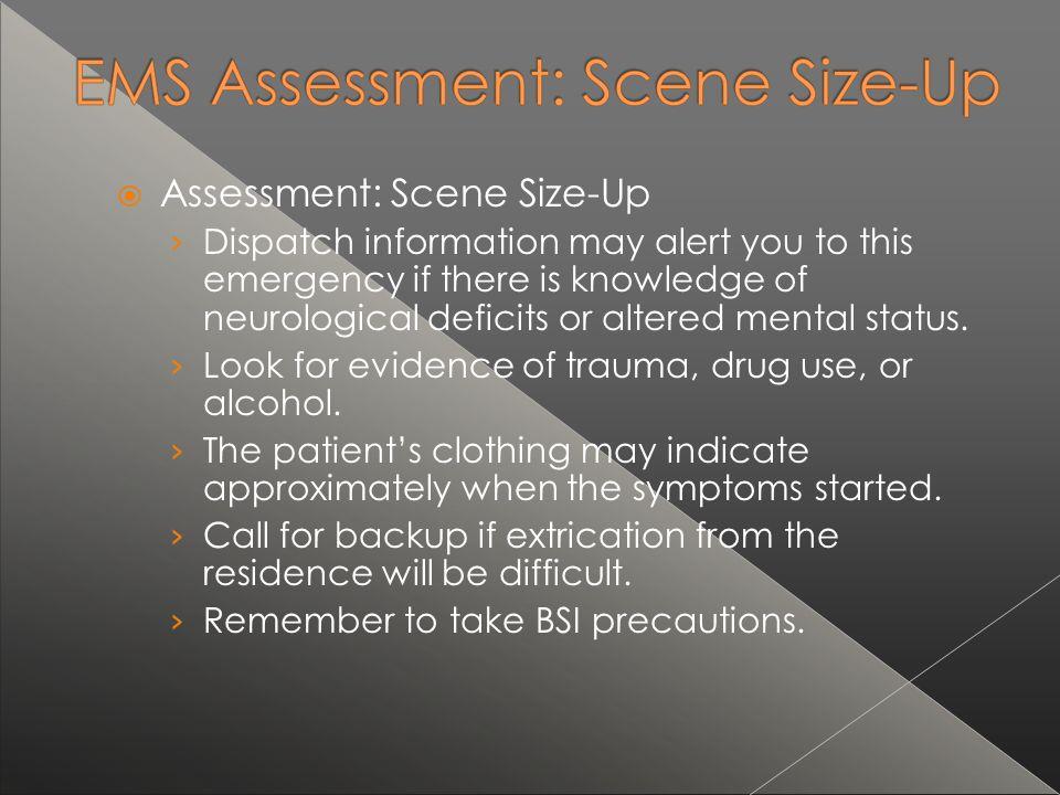 Assessment: Scene Size-Up