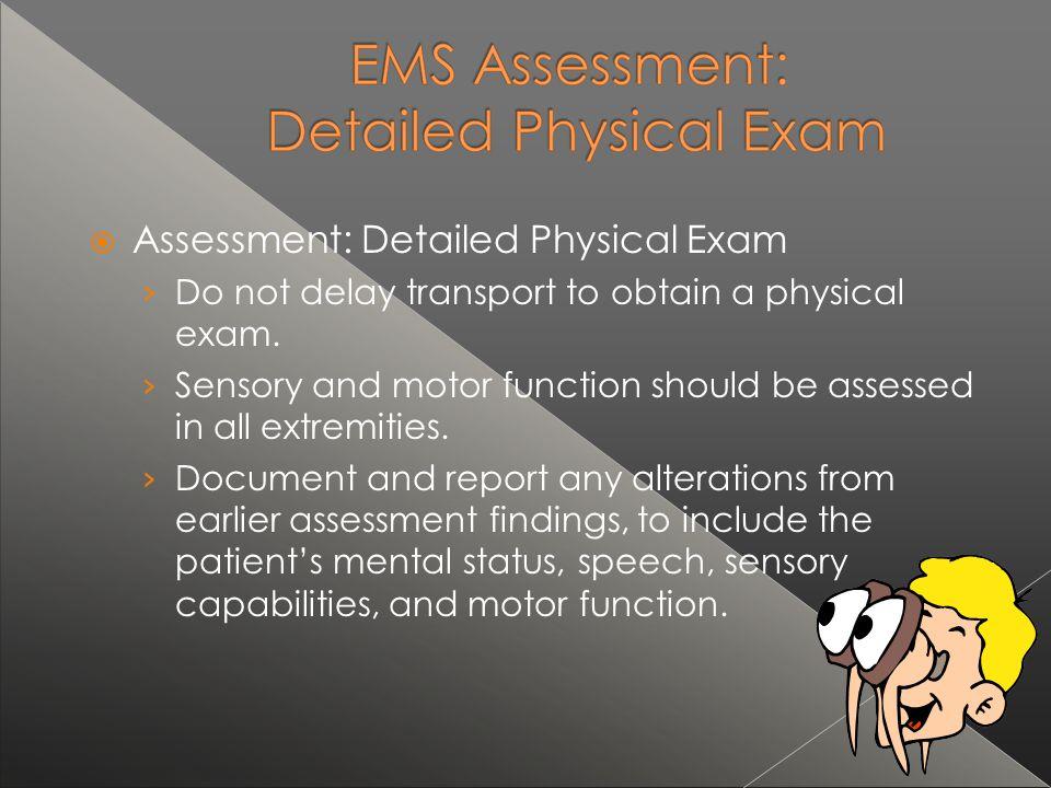 Assessment: Detailed Physical Exam