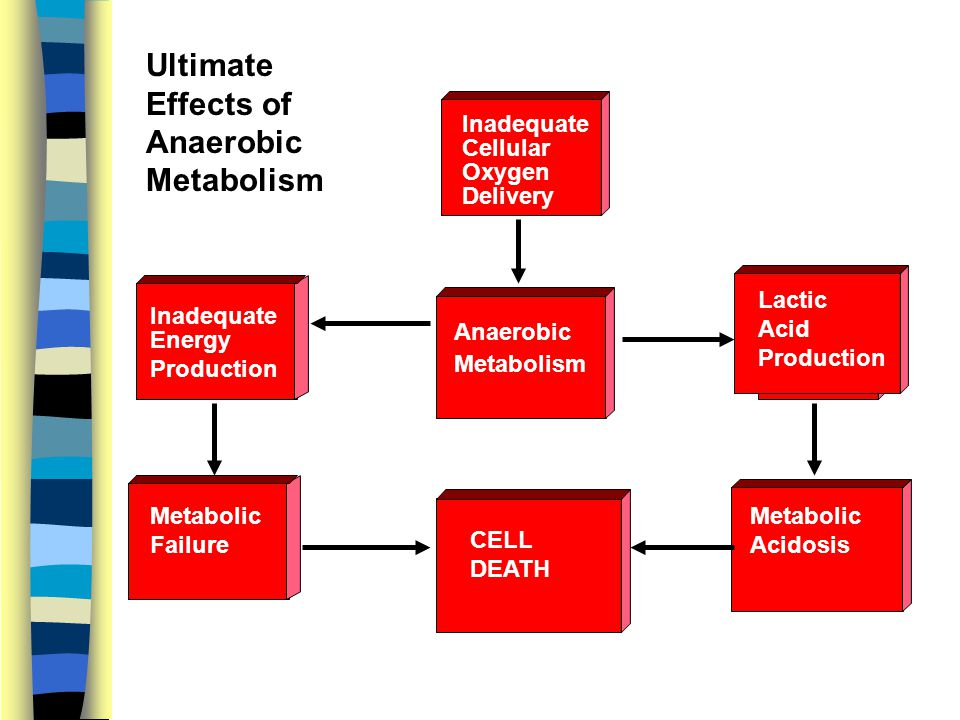 Ultimate Effects of Anaerobic Metabolism