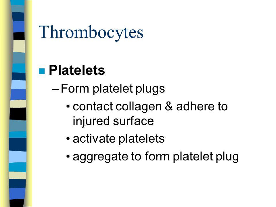 Thrombocytes Platelets Form platelet plugs