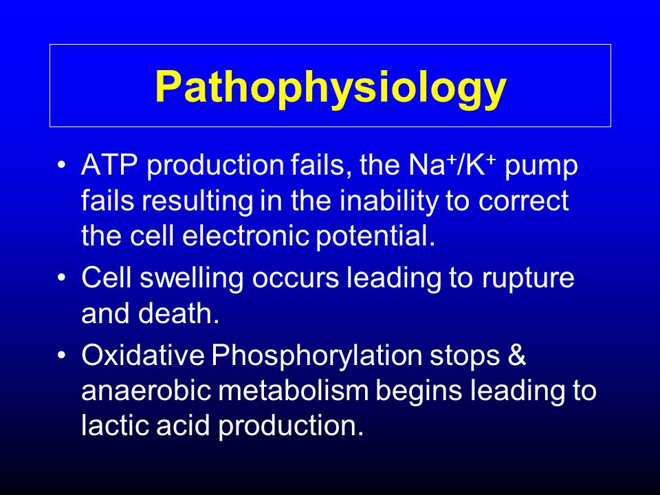 Pathophysiology ATP production fails, the Na+/K+ pump fails resulting in the inability to correct the cell electronic potential.