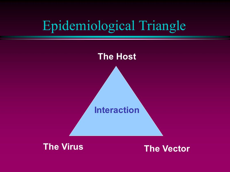 Epidemiological Triangle