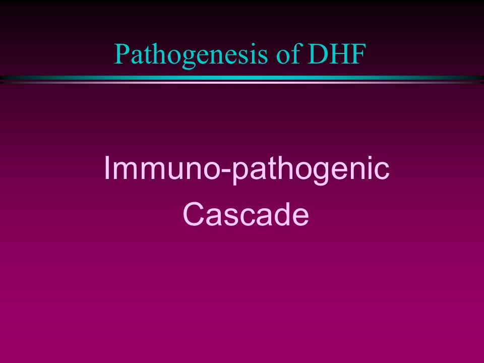 Pathogenesis of DHF Immuno-pathogenic Cascade