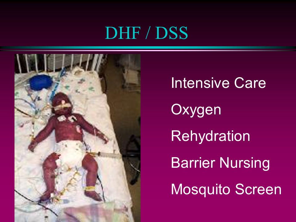 DHF / DSS Intensive Care Oxygen Rehydration Barrier Nursing
