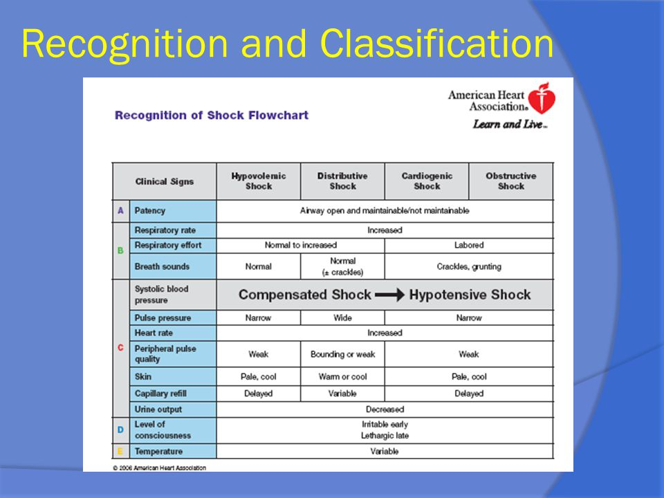 Recognition and Classification