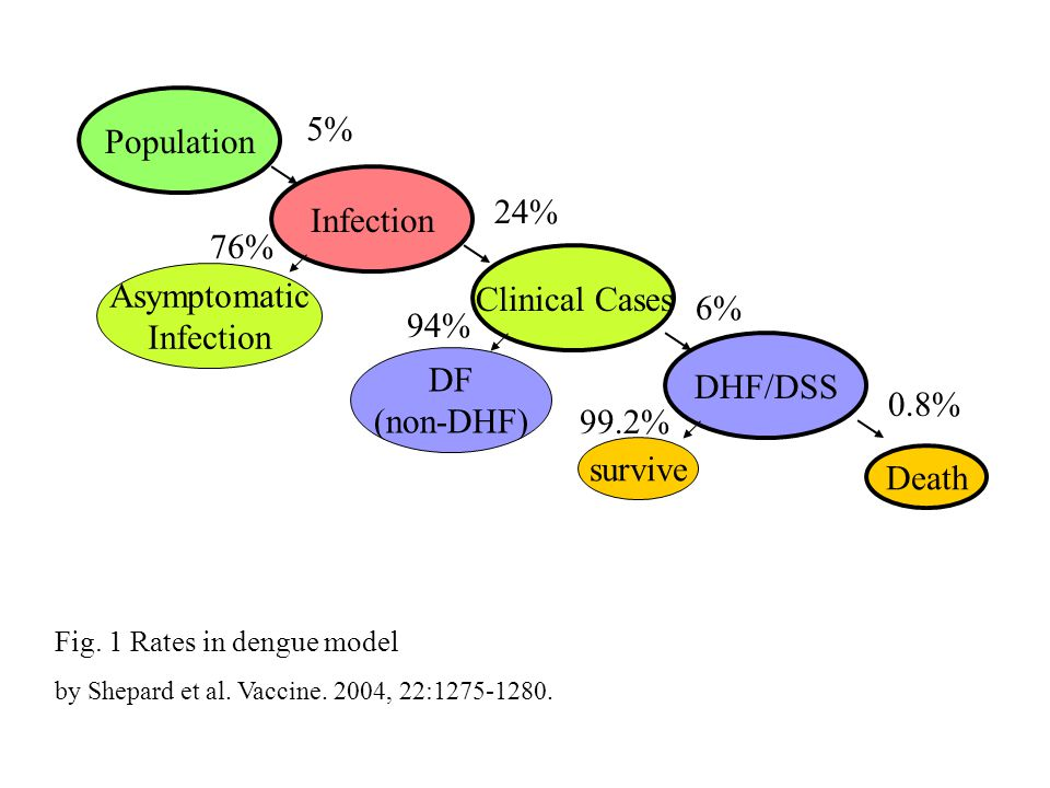 Population Infection Clinical Cases DHF/DSS Asymptomatic DF (non-DHF)