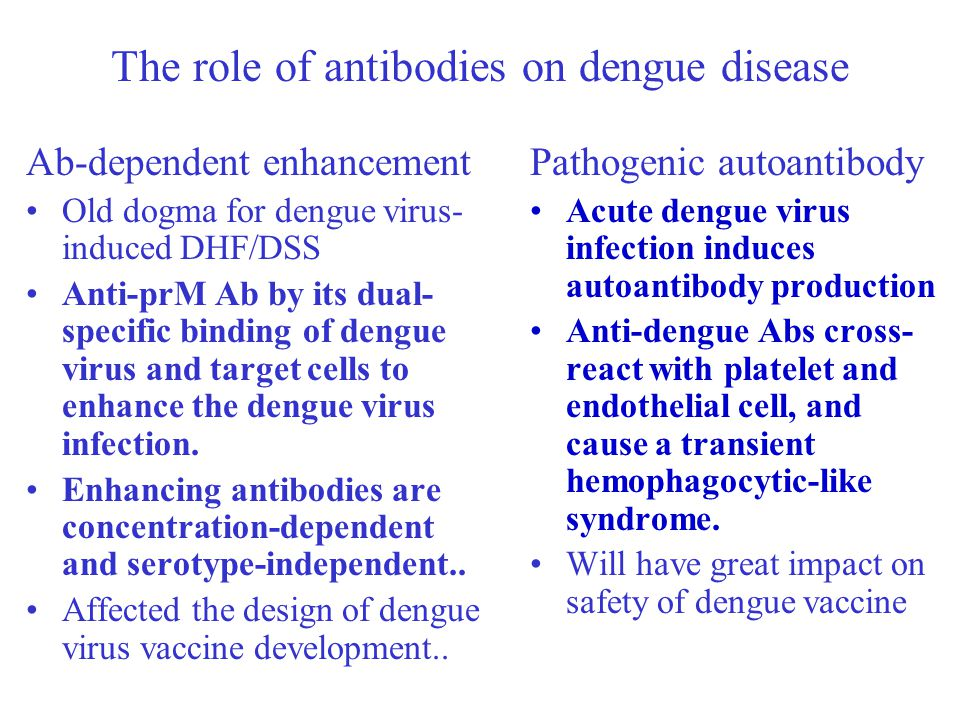 The role of antibodies on dengue disease