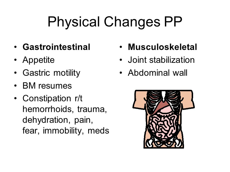 Physical Changes PP Gastrointestinal Appetite Gastric motility