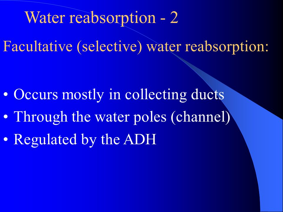 Water reabsorption - 2 Facultative (selective) water reabsorption:
