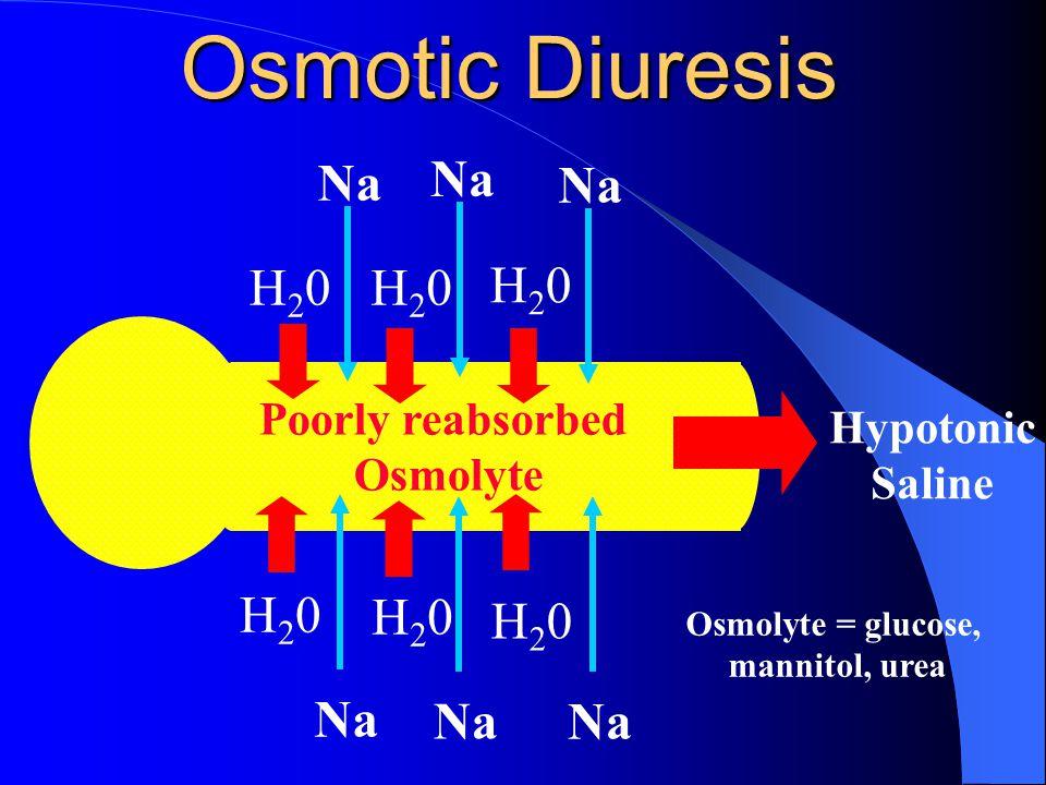 Osmotic Diuresis Na Na Na H20 H20 H20 H20 H20 H20 Na Na Na